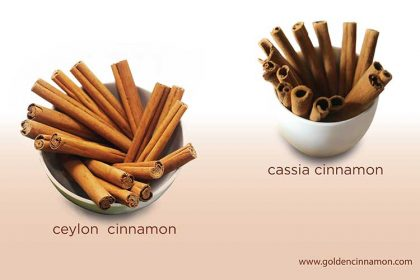 How to Identify Ceylon Cinnamon and Cassia Cinnamon ...